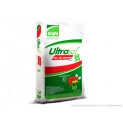 Ultrasol Flor de maceta