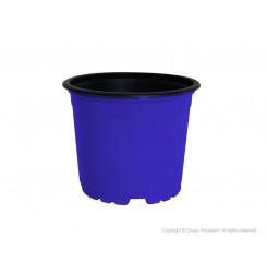 Maceta colores TEKU 3.5 pulgadas