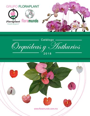 data/slider18/catalogo-orquidea18.png