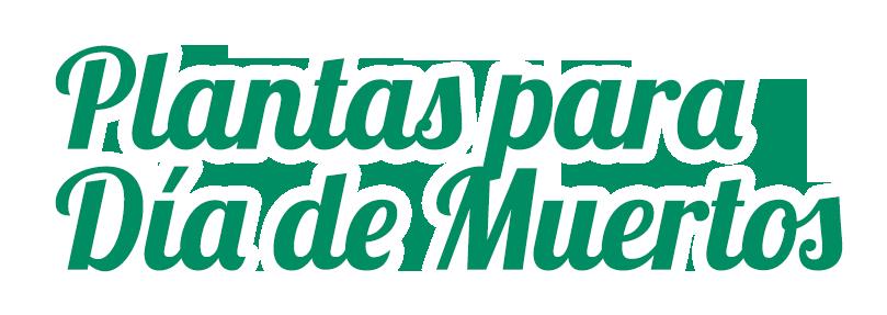 data/slides20/title-plantas-para-dia-de-muertos-floramundo.png